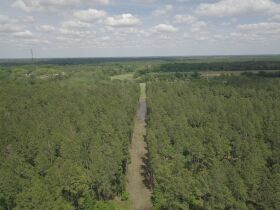 300± Acres | Excellent Crop & Timberland featured photo 5