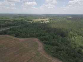300± Acres | Excellent Crop & Timberland featured photo 10