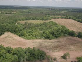 300± Acres | Excellent Crop & Timberland featured photo 2