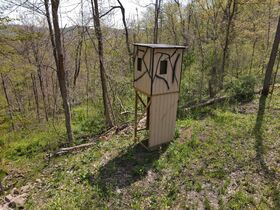 85+ Wooded Guernsey County Acres featured photo 2
