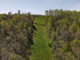85+ Wooded Guernsey County Acres featured photo 6
