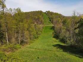 85+ Wooded Guernsey County Acres featured photo 10