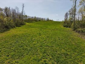 85+ Wooded Guernsey County Acres featured photo 11