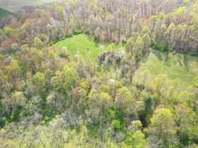 *Absolute Auction* 110 Acre Guernsey Co. Trophy Property featured photo 1