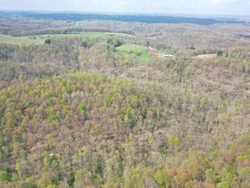 *Absolute Auction* 110 Acre Guernsey Co. Trophy Property featured photo 10