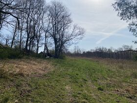 *Absolute Auction* 110 Acre Guernsey Co. Trophy Property featured photo 4