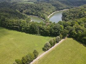 House, 51 +- Acres in Tracts, Truck & Personal Property in Jamestown at Absolute Live Auction featured photo 12