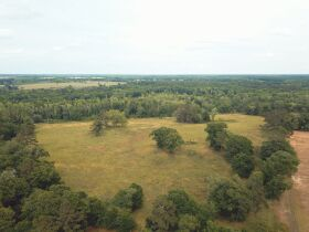 121± Acres | Gaskins Estate featured photo 4