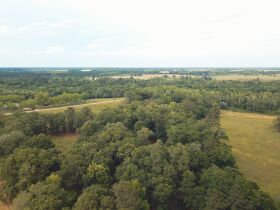 121± Acres | Gaskins Estate featured photo 5