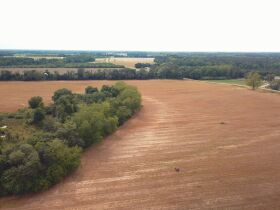 121± Acres | Gaskins Estate featured photo 6