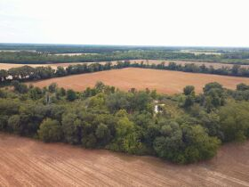 121± Acres | Gaskins Estate featured photo 7