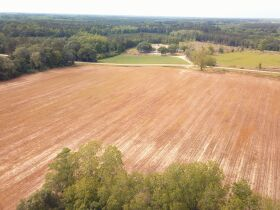 121± Acres | Gaskins Estate featured photo 9
