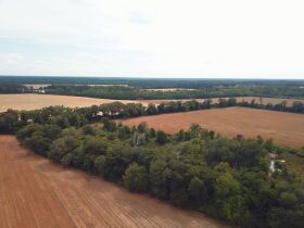 121± Acres | Gaskins Estate featured photo 10