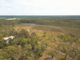 42.5± Acres   Gaskins Estate featured photo 6