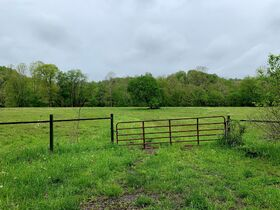 7 Acres On Tygart Valley River featured photo 1