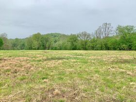 7 Acres On Tygart Valley River featured photo 2