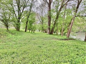 7 Acres On Tygart Valley River featured photo 5
