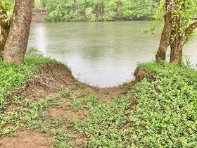 7 Acres On Tygart Valley River featured photo 8