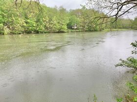 7 Acres On Tygart Valley River featured photo 10