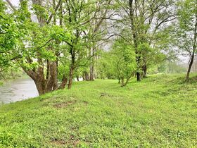 7 Acres On Tygart Valley River featured photo 11