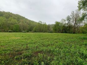 7 Acres On Tygart Valley River featured photo 12
