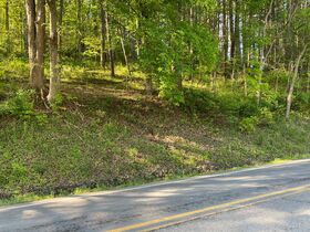 Absolute 25 Acres Braxton County Land featured photo 6