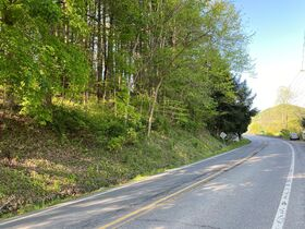 Absolute 25 Acres Braxton County Land featured photo 7