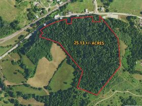 Absolute 25 Acres Braxton County Land featured photo 1