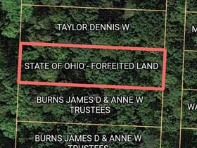 Guernsey County Auditors Sale of Forfeited Lands featured photo 5