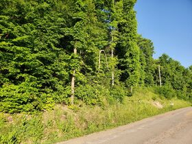 Guernsey County Auditors Sale of Forfeited Lands featured photo 1