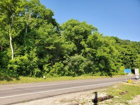 Guernsey County Auditors Sale of Forfeited Lands featured photo 10