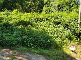 Guernsey County Auditors Sale of Forfeited Lands featured photo 3