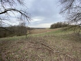 *Morgan Co. Absolute Auction* 100 Acre Recreational Property & Building Sites featured photo 3