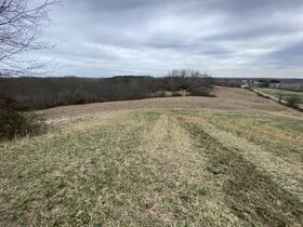 *Morgan Co. Absolute Auction* 100 Acre Recreational Property & Building Sites featured photo 5