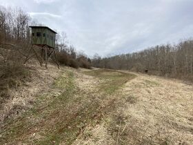 *Morgan Co. Absolute Auction* 100 Acre Recreational Property & Building Sites featured photo 11
