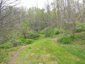 *Morgan Co. Absolute Auction* 100 Acre Recreational Property & Building Sites featured photo 12