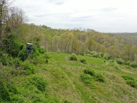 *Morgan Co. Absolute Auction* 100 Acre Recreational Property & Building Sites featured photo 1