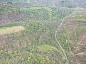 *Morgan Co. Absolute Auction* 100 Acre Recreational Property & Building Sites featured photo 4