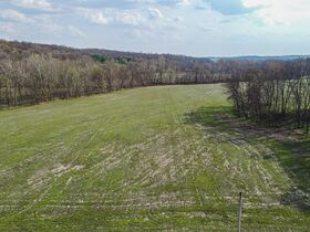 Well Balanced 158 Acres Farm Land -Conveniently Located -Wayne County featured photo 3