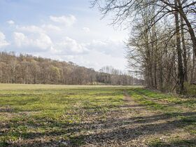 Well Balanced 158 Acres Farm Land -Conveniently Located -Wayne County featured photo 4