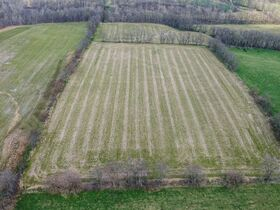 Well Balanced 158 Acres Farm Land -Conveniently Located -Wayne County featured photo 2