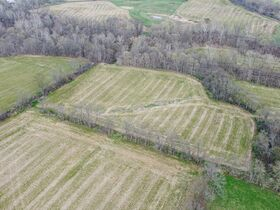 Well Balanced 158 Acres Farm Land -Conveniently Located -Wayne County featured photo 10
