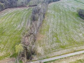 Well Balanced 158 Acres Farm Land -Conveniently Located -Wayne County featured photo 11