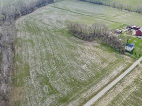 Well Balanced 158 Acres Farm Land -Conveniently Located -Wayne County featured photo 12