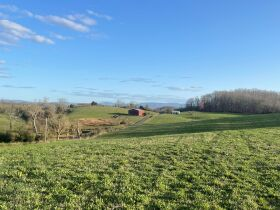 93 Acres offered in 15 Tracts featured photo 1