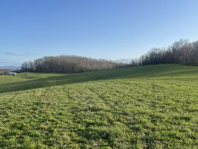93 Acres offered in 15 Tracts featured photo 3