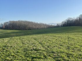 93 Acres offered in 15 Tracts featured photo 4