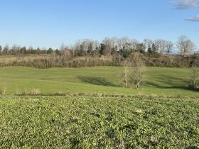 93 Acres offered in 15 Tracts featured photo 5
