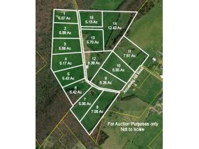 93 Acres offered in 15 Tracts featured photo 7
