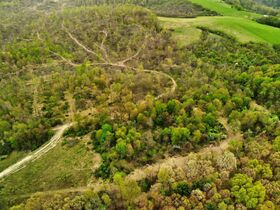 Stoney Hill Road Online Only Land Auction featured photo 4